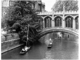 Punting at Cambridge Photographic Print by Henry Grant