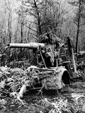 German Artillery Gun, Second World War, 1945 Photographic Print