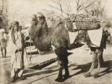 Bukhara - Uzbekistan Photographic Print