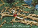 California Alligator Farm - Los Angeles Photographic Print