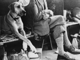 Crossed Legs at a Manchester Dog Show Photographic Print by Shirley Baker