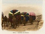 Algeria - Camel Transport Photographic Print