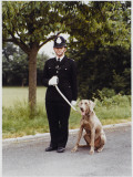 Metropolitan Police Dog Trainer Training His Weimaraner Dog Photographic Print