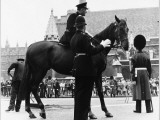 Metropolitan Police Officer Talks to Mounted Police Officer on a Police Horse Photographic Print
