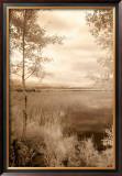 Peaceful Morning I Prints by Monte Nagler