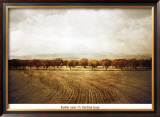 The Olive Grove Prints by Heather Jacks
