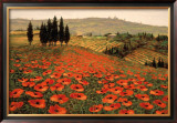 Hills of Tuscany I Print by Steve Wynne