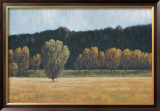 Cottonwood Country I Prints by John Macnab