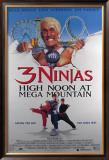 3 Ninjas Prints
