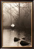 Silvered Morning Pond Posters by Heather Ross