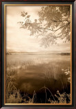 Peaceful Morning II Poster by Monte Nagler