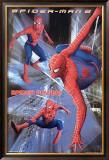 Spider-Man 2 Print