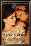 A Walk On The Moon Posters