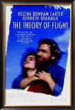 Theory Of Flight Posters