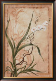 Asian Orchid I Poster by Susanne Renee Leasure