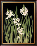 Spray of Narcissus Print by Tan Chun
