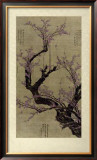 Plum Blossom Tree Prints