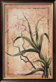Asian Orchid II Prints by Susanne Renee Leasure