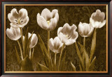 Baroque Tulips Posters by Ives Mccoll