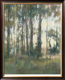 Woods Edge II Limited Edition Framed Print by Steve Parker
