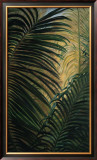 Light through the Palm Fronds Prints by Mary Spears
