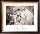 Masai Mara II Art by Lorne Resnick