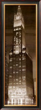 Woolworth Building Poster by P. Moss