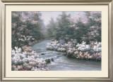 River Cascade Posters by Diane Romanello