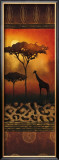 Giraffe at Sunset Posters by Nicola Rabbett