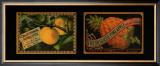 Fruit Duet Print