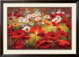 Meadow Poppies II Prints by Lucas Santini