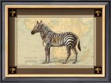 Zebra with Border I Print