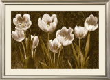 Baroque Tulips Poster by Ives Mccoll