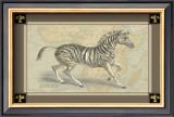 Zebra with Border II Posters