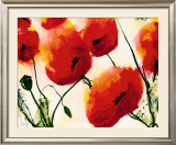 Mohn Prints by Heidi Reil