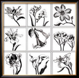 Garden Sophisticates Prints by Judy Shelby
