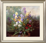 Landscape with Irises Art by Barbara Koch