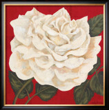 Rosa Blanca Grande I Posters by Judy Shelby
