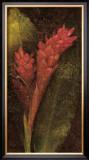 Ginger Prints by John Seba