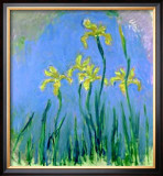 Les Iris Jaunes Posters by Claude Monet