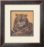 Safari Tiger Posters by Ann Walker