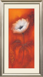 Anemone I Poster by Betty Jansma
