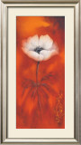 Anemone II Prints by Betty Jansma