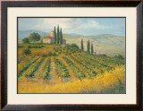 Tuscan Dream Posters by Jill Schultz McGannon