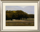 Chamberino Orchards Midday Prints by Marc Bohne