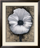 Poppy Love I Prints by Tan Chun