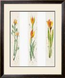 Blumen Motive Posters by Laszlo Kova