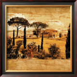 Tuscan Countryside I Print by Colin Floyd