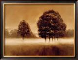 Misty Meadow Prints by Alan Parker