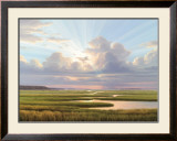 Low Country Splendor Art by Henry Von Genk